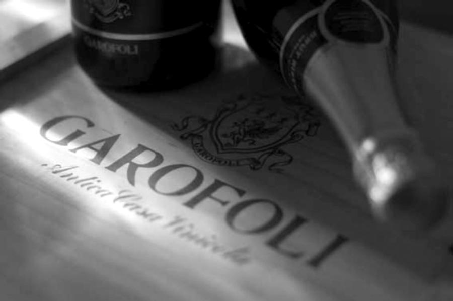 Visita all'azienda vinicola Garofoli